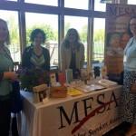2017 Vendor- MESA